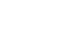CFAIE logo web footer